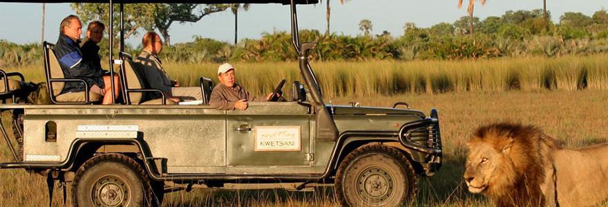 des sites de safari