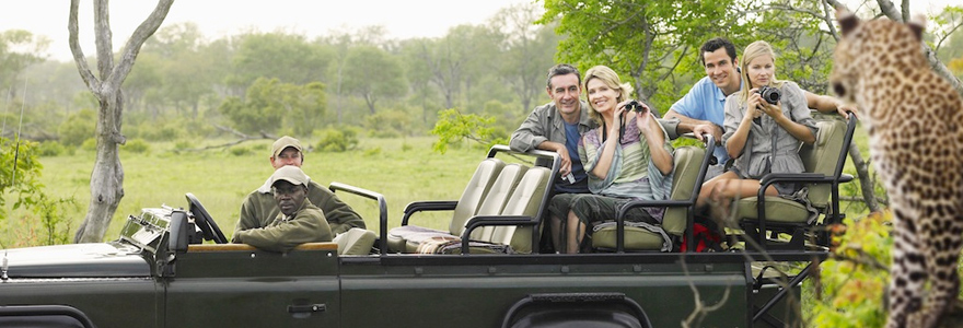 Un safari-photo